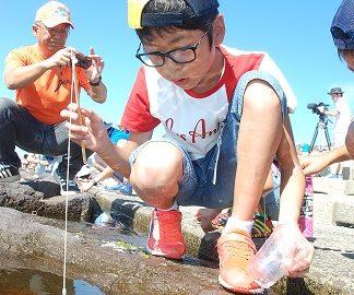 小学生漁村体験